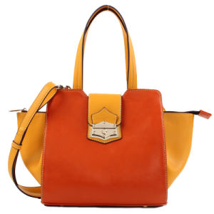 2016 New Arrival Stylish Fashion Women/Lady Handbag (C70702) pictures & photos