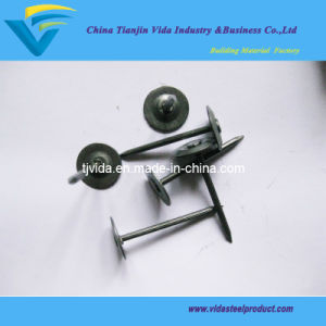 "Metal Round Cap Masonry Nail (1/2""-4"") pictures & photos"
