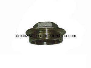 Brass Forging Plug for Valves (ITF205) pictures & photos