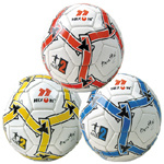 Professional Soccer Ball, Football (NSB-22V) pictures & photos