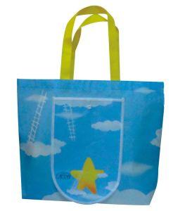 Eco-Friendly Bag pictures & photos