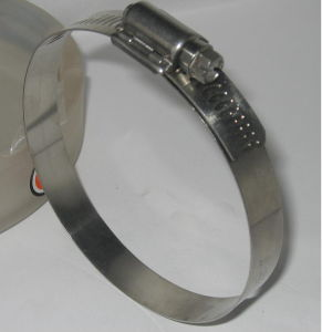 Hose Clamp pictures & photos