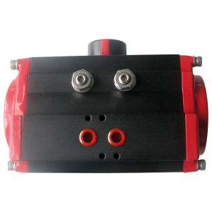 Pneumatic Actuator for Valve Control
