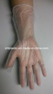 Powder Free Stretch Vinyl Gloves