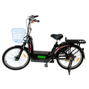Electric Bike (TDR161CZ)