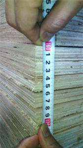 18mm Shuttering Plywood - Construction Plywood