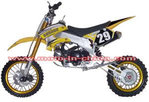 CE Certificate Dirt Bike (BON-DB125-5)
