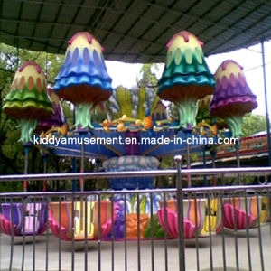 Hot Amusement Park Family Rides for Outdoor Playground pictures & photos