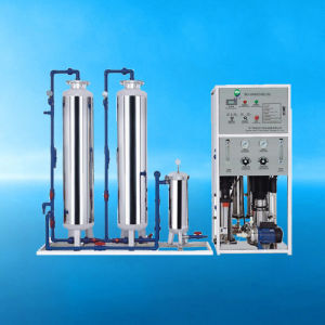 Water Purification System RO-1000 (700L-H) pictures & photos