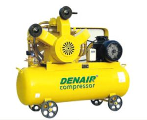 Oil-Free Pistion Air Compressor (DW series) pictures & photos