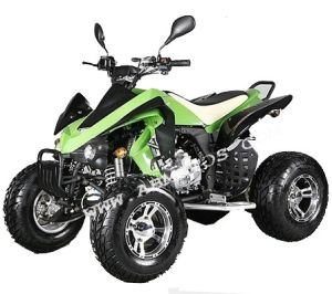 150CC Big Kawasaki off-Road ATV & Quad (ATV-150D)