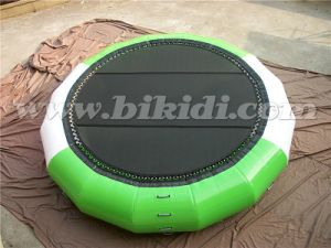 Inflatable Jump Water Trampoline, Inflatable Sea Trampoline for Sale D3017 pictures & photos