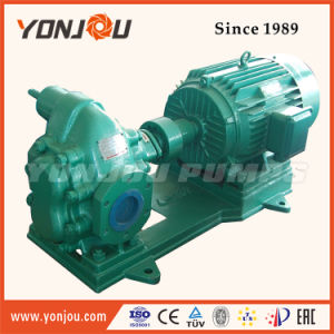 Waste Oil Transferable Gear Pump pictures & photos