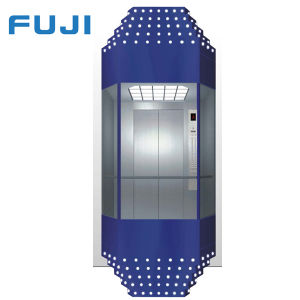 FUJI Panoramic Observation Lift Elevator pictures & photos