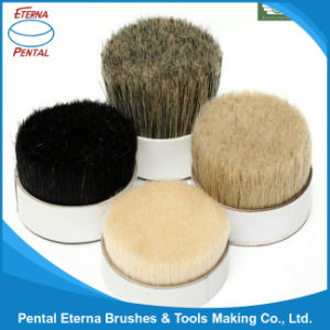 High Quality Bristle (Black, White, Gray) pictures & photos