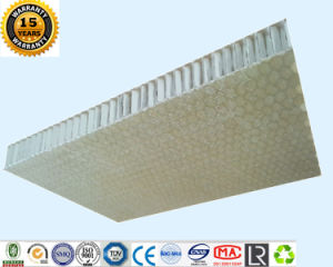 Fiberglass Aluminum Honeycomb Panels pictures & photos