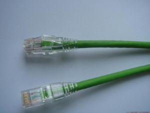 Fluke Test Pass FTP CAT6 Patchcord (1.5m) pictures & photos