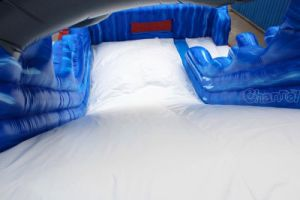 Dolphin Inflatable Dry Slide for Sale Chsl569 pictures & photos