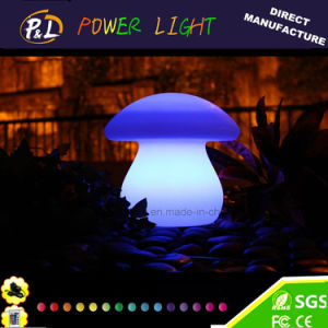 Modern Colorful Rechargeable Glowing Light up Decoration LED Lamp pictures & photos