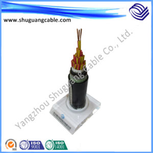 Environmental Riendly PE Insulation and Sheath Armored Instrument Computer Cable pictures & photos