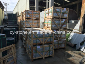 Natural Stone G654 Honed Granite Tiles for Wall/Flooring/Paver pictures & photos