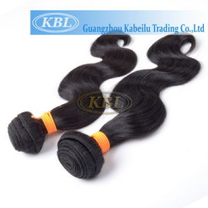 Indian No Synthetic Human Hair pictures & photos