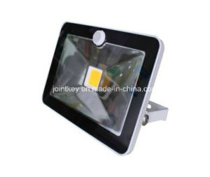 10/20/30/ Watt IP65 LED Floodlight with PIR pictures & photos