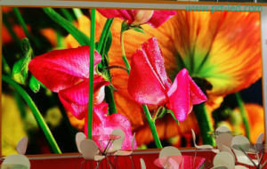P6.25 Indoor Rental Full Color LED Display Panel /Video Panel (500*500mm or 500*1000mm size) pictures & photos