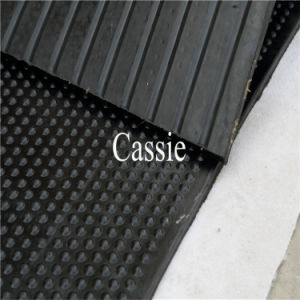 Durable Rubber Stable Floor Mats, Anti-Fatigue Rubber Stall Mat pictures & photos