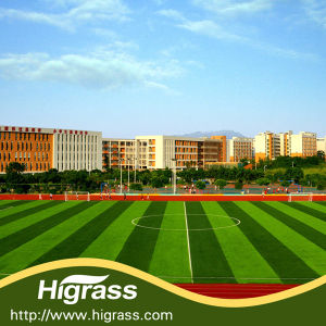 Artificial Grass for Professional Football Club pictures & photos
