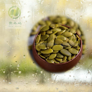 Shine Skin Pumpkin Seed Kernels with Good Quality and Hot Sales AA for Human Consumption pictures & photos