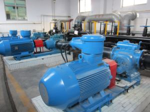 Screw Pump-Twin Screw Pump-Oil Pump-Cargo Pump pictures & photos