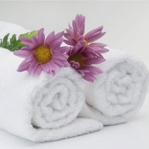 China Manufacturers Supply Super Soft Hotel Face Towel (DPFT8058) pictures & photos