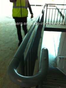 Painted Steel Handrail for Outdoor and Indoor Use pictures & photos