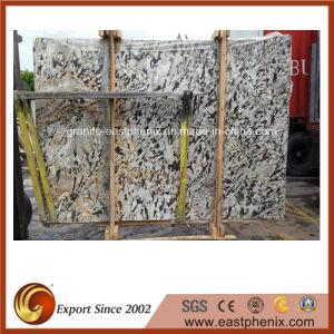 Natural Crema Delicatus Granite Big Slab for Paving/Floor pictures & photos