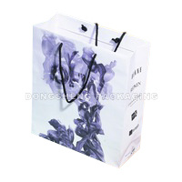 Paper Gift Bag for Apparel, Shoes&Other Gift