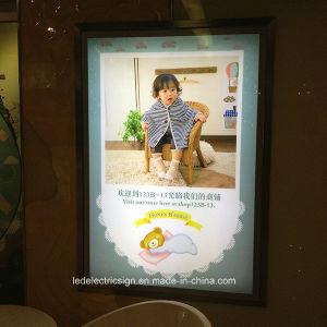 Stores to Senior Frame Light Box pictures & photos