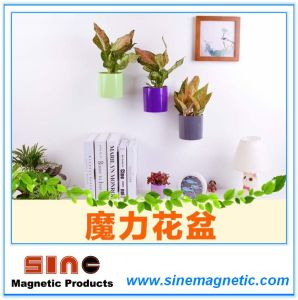 Creative Home Wall Simple Magnetic Flowerpot pictures & photos