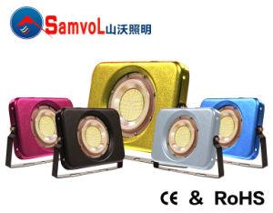 LED Flood Light with CE and RoHS_Free Rotation 360