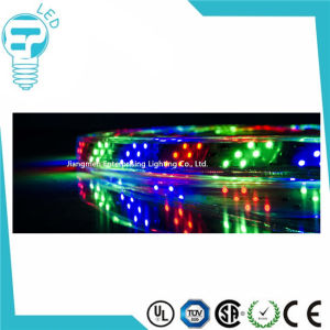 220V LED Strip 3528 5050 IP68 LED Strip with RGB pictures & photos