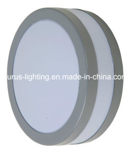 Ring Stainless Steel Outdoor Light with Ce Certificate (AM-SS3002 GREY) pictures & photos