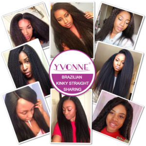 100% Unprocessed Brazilian Hair Extension 100% Human Hair pictures & photos