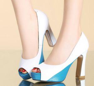 Elegant Sexy Women Shoes High Heels Pump pictures & photos