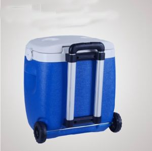 Best Selling Mini Trolley Cooler Lunch Bag for Picnic pictures & photos