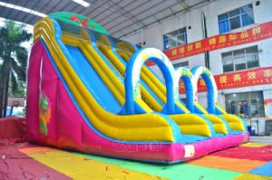 Commercial Double Lane Inflatable Dragon Slide Chsl643 pictures & photos