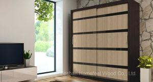 Professional Manufacturer Sliding Door Bedroom Wardrobe (HF-EY0211) pictures & photos