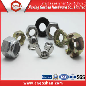 Carbon Steel / Stainless Steel Fastener Nut pictures & photos