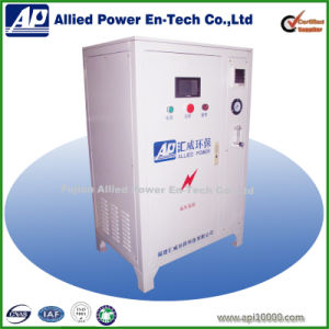High Concentration Ozone Generator (HW-A-100) pictures & photos