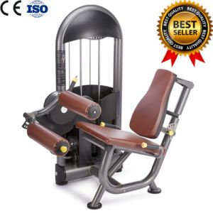 Exercise Machine Seated Leg Curl Big China Factory and Excellent Quality pictures & photos