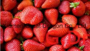 Individual Quick Freezin-IQF Organic Strawberry pictures & photos
